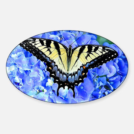 Eastern Yellow Tiger Swallowtail Bu Sticker (Oval)