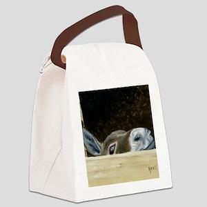 Iwannaseemousepad Canvas Lunch Bag