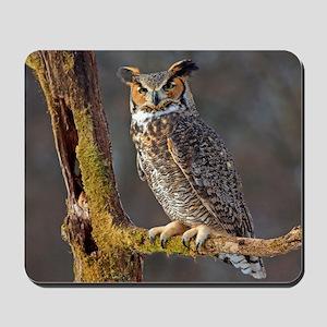 Hoot OWL Mousepad