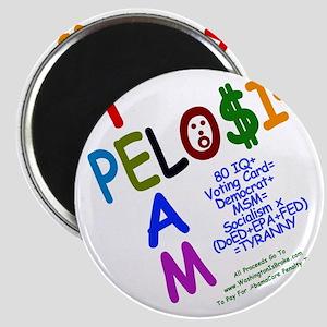 ACPSP: Magnet