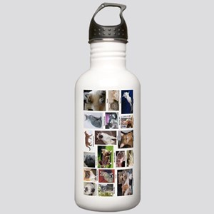 Cat Breed Full Color Stainless Water Bottle 1.0L