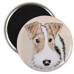 Wire Fox Terrier 2.25