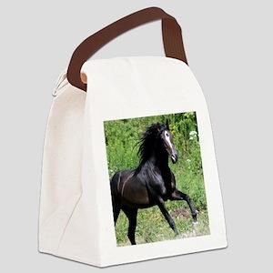 Bayamo Horiz 16x20 Canvas Lunch Bag