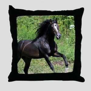 Bayamo Horiz 16x20 Throw Pillow