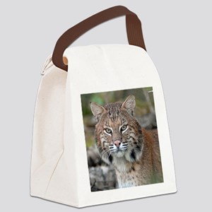 11x11_pillow 3 Canvas Lunch Bag