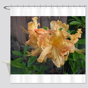 Close-up Daylilly Shower Curtain
