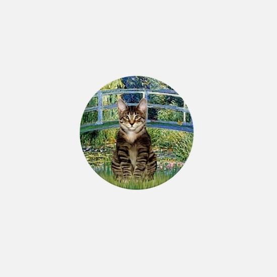 Bridge - Tabby Tiger cat 30 Mini Button
