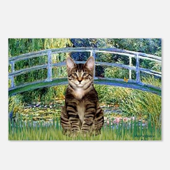 Bridge - Tabby Tiger cat  Postcards (Package of 8)
