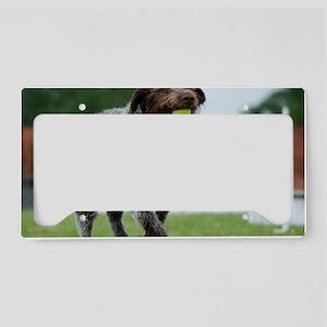 jester_greetingcard_artwork License Plate Holder