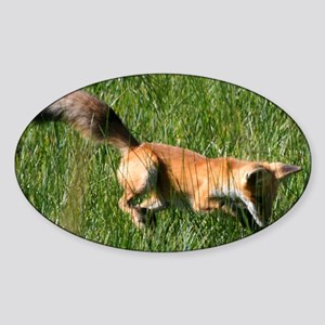 Red fox Sticker (Oval)