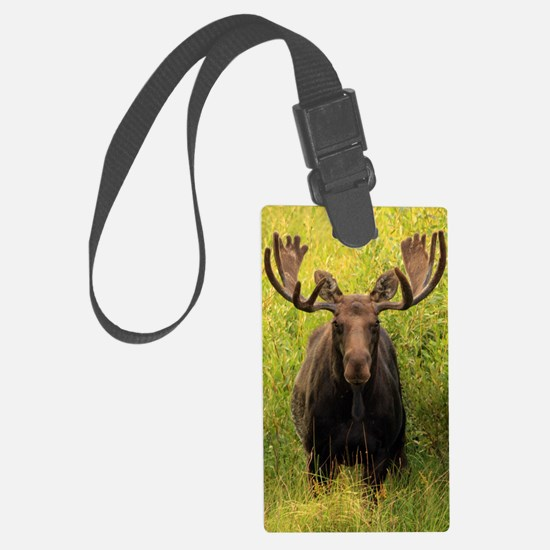 Shiras Moose Luggage Tag