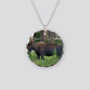Wildlife, Bull Moose, Photog Necklace Circle Charm