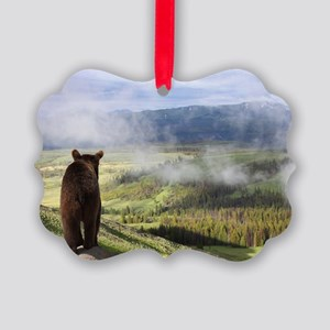 Jakes Overlook 6x4 Picture Ornament