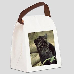 cat-ron.singer1001 Canvas Lunch Bag