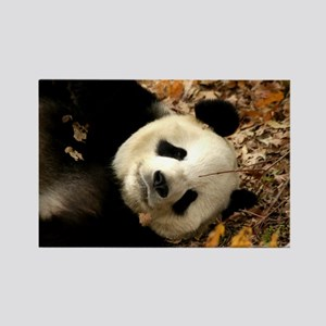 Tai Shan resting in leaves Rectangle Magnet