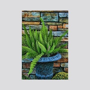 Fern in a pot Rectangle Magnet