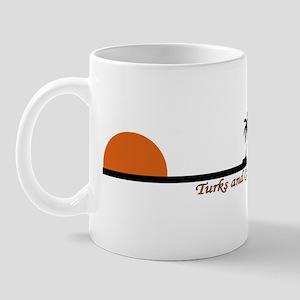 turksandcaicosorsun Mugs