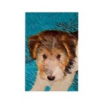 Wire Fox Terrier Puppy Rectangle Magnet