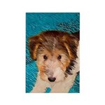 Wire Fox Terrier Puppy Rectangle Magnet (10 pack)