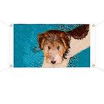 Wire Fox Terrier Puppy Banner