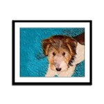 Wire Fox Terrier Puppy Framed Panel Print