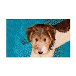 Wire Fox Terrier Puppy 35x21 Wall Decal