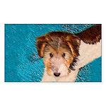 Wire Fox Terrier Puppy Sticker (Rectangle)