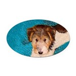 Wire Fox Terrier Puppy Oval Car Magnet
