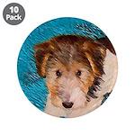 Wire Fox Terrier Puppy 3.5