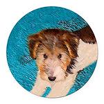 Wire Fox Terrier Puppy Round Car Magnet