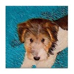 Wire Fox Terrier Puppy Tile Coaster