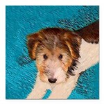 Wire Fox Terrier Puppy Square Car Magnet 3