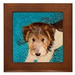 Wire Fox Terrier Puppy Framed Tile