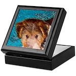 Wire Fox Terrier Puppy Keepsake Box