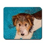 Wire Fox Terrier Puppy Mousepad