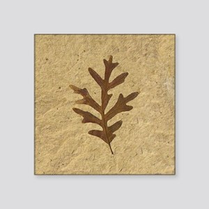 "featherLobeOak Square Sticker 3"" x 3"""
