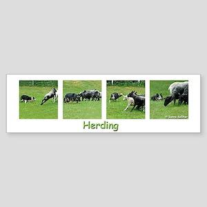 Herding Bumper Sticker