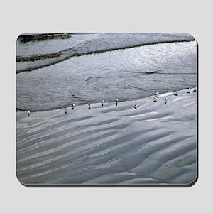 (4) Ocean Lines Mousepad