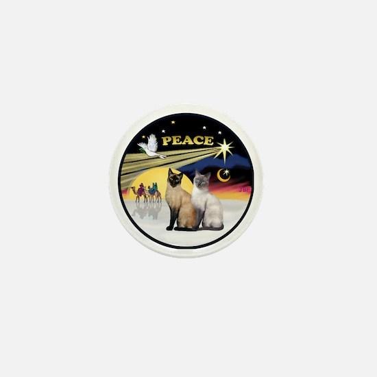 R-Xmas Dove - Two Siamese cats (Choc+B Mini Button
