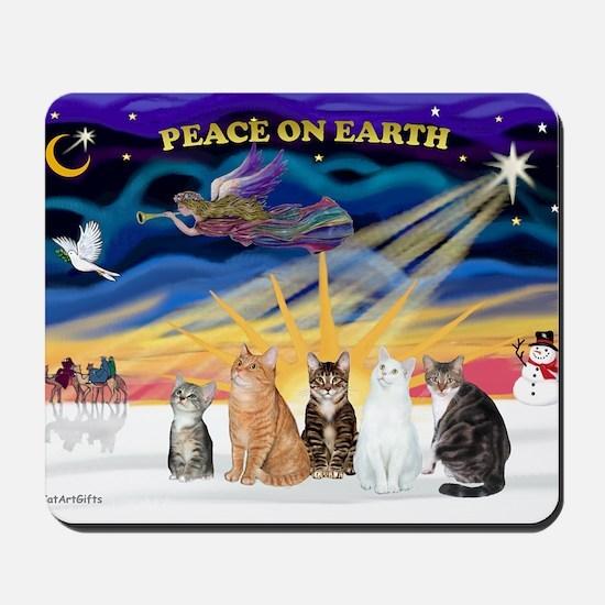 Xmas Sunrise - Five cats (AmSH) Mousepad