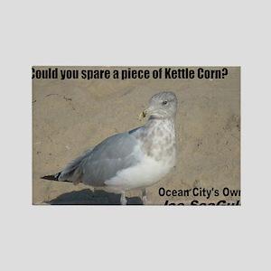 seagull_kettle_lg Rectangle Magnet