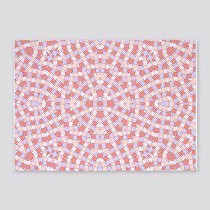 kaleido art soft red boxes 5'x7'Area Rug