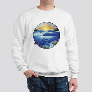 3-dolphans-copy Sweatshirt