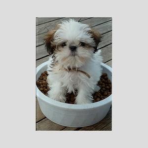 Shih Tzu Puppy in Bowl Rectangle Magnet