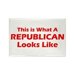 Republican Rectangle Magnet (10 pack)