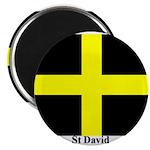 Wales St David Magnet