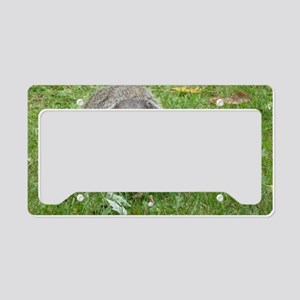 PstrminiA12x18 License Plate Holder