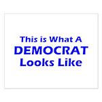 Democratic Small Poster