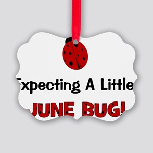 expectingalittlejunebug Picture Ornament