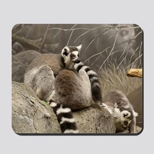 RingTailed Lemurs Small Poster Mousepad